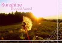 sunshine-bogger-award