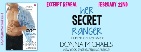 excerptreveal-hersecretranger-dmichaels_final