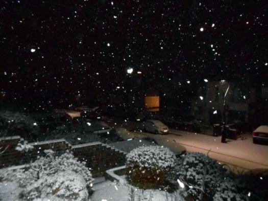 january-snowfall-nighttime