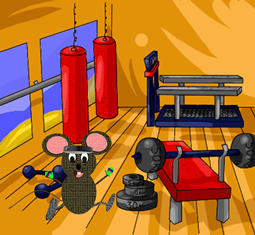 mouse-in-gym-2