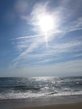 sunsea
