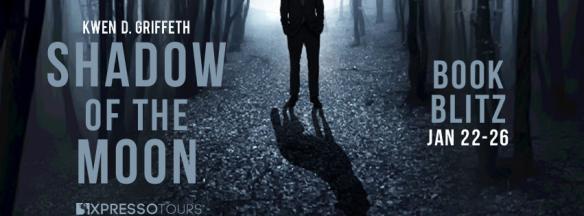 ShadowoftheMoonBlitzBanner.png